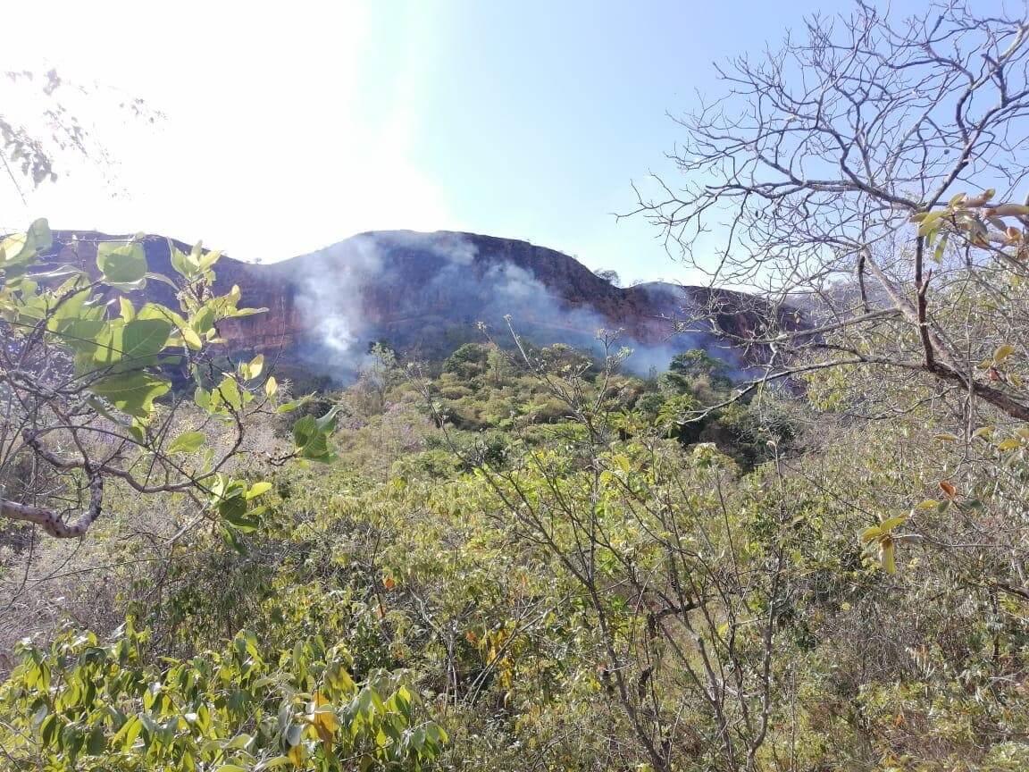 Municipios de Palermo y La Plata afectados por incendios