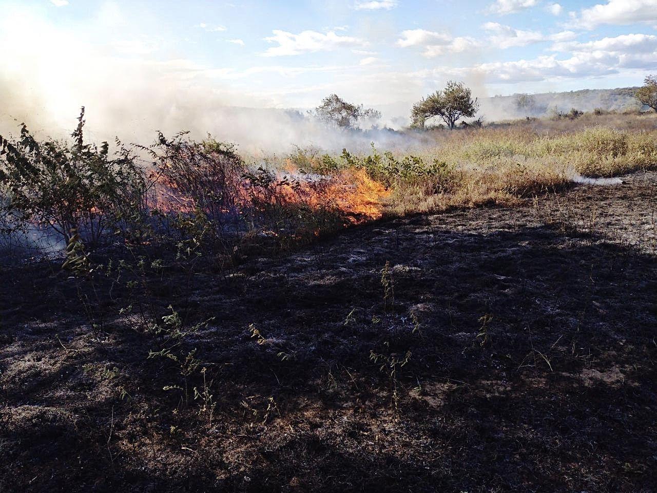 Siguen los incendios forestales en Neiva