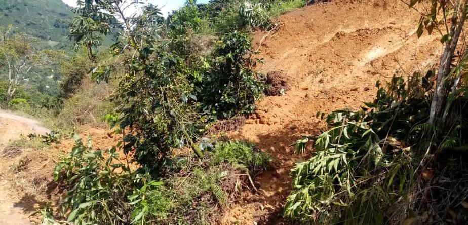 Innumerables pérdidas en Pitalito por inundaciones y deslizamientos