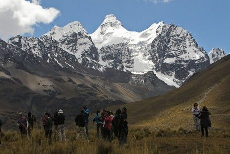 Dos nuevas especies de plantas son descubiertas en los Andes peruanos