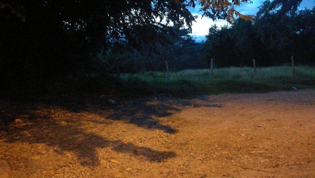 Zonas verdes son utilizadas para el consumo de alucinógenos.