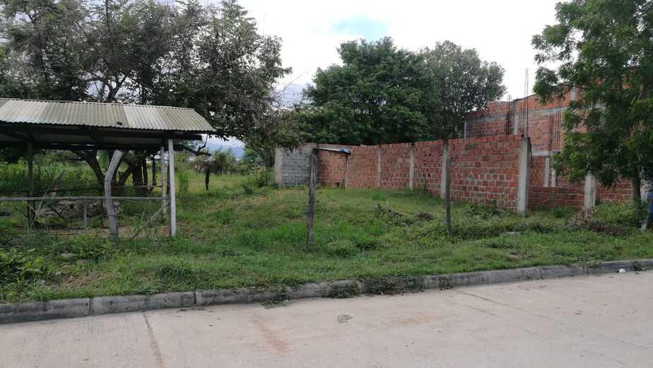 Zonas verdes del barrio son utilizadas para el consumo de drogas.