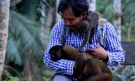 El indígena que protege a los monos huérfanos en la selva amazónica