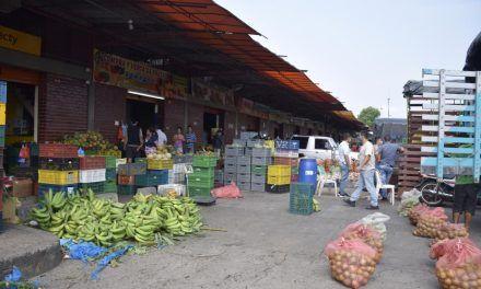 Alarmante alza en precios de las verduras