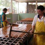 Paneleros del Huila viven su 'dulce' momento