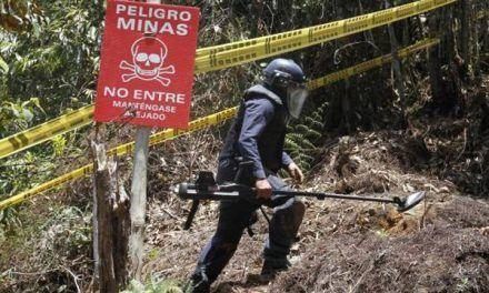 Mueren dos niños al caer en un campo minado en Nariño