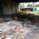 Basuras, un foco de enfermedades en Las Delicias