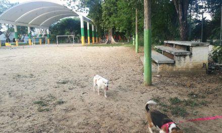 Drogadicción y delincuencia aumentó en 'Cándido Leguizamo'