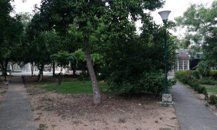 Falta de iluminación causa inseguridad en el barrio Colmenares