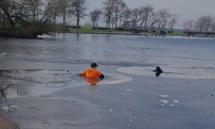Hombre se arriesga a morir congelado para salvar un perro