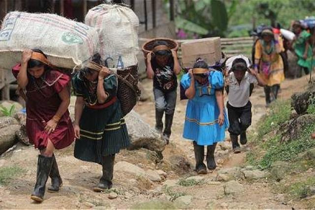 De la cifra total, 1.535 personas salieron de sus hogares en diciembre, hechos que se concentraron en Bahía Solano, Chocó, donde 900 indígenas abandonaron su comunidad.