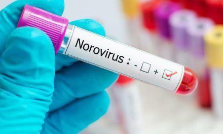 El norovirus, el nuevo virus que amenaza desde China