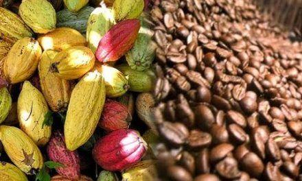 Mañana comienza Primera Feria de Café, Cacao y Muestra Agroturística del Huila en Bogotá
