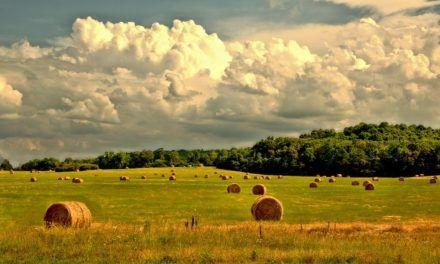 El turismo rural: desarrollo local incluyente