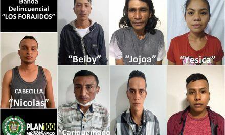 """Desarticulan banda delincuencial """"los forajidos"""" en Pitalito"""