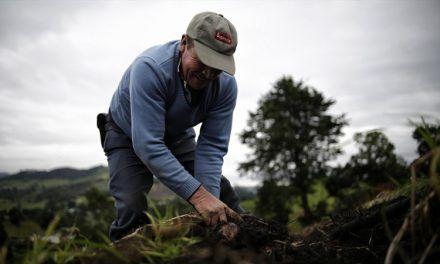 Lanzan nueva herramienta de formación virtual para agricultores de Colombia