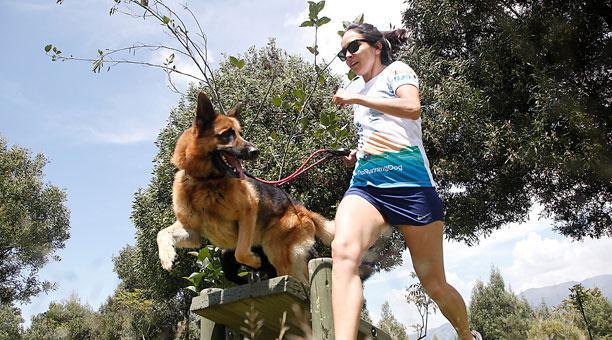 La importancia de la actividad física para los perros
