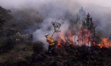 Más de 400 hectáreas resultaron afectadas por incendio en páramo de Saturban