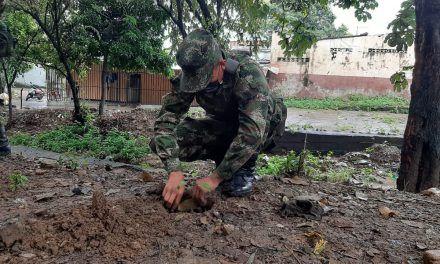Soldados y habitantes de la comuna 8 se unieron para realizar labores de reforestación