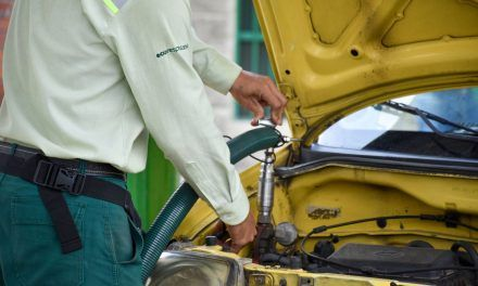Un combustible limpio llegará a la canasta energética del país