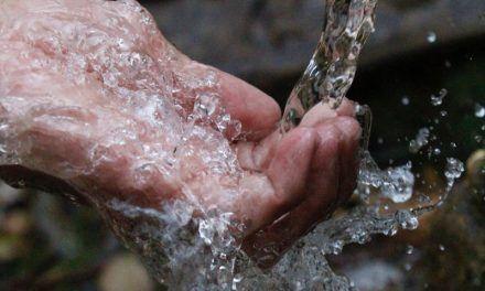 El valor del agua: elemento de vida