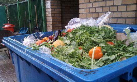 'Casi un 20 % de los alimentos se desperdician en el mundo'