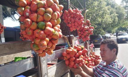 Chontaduro o cachipay, fruta tropical que está de moda en Neiva