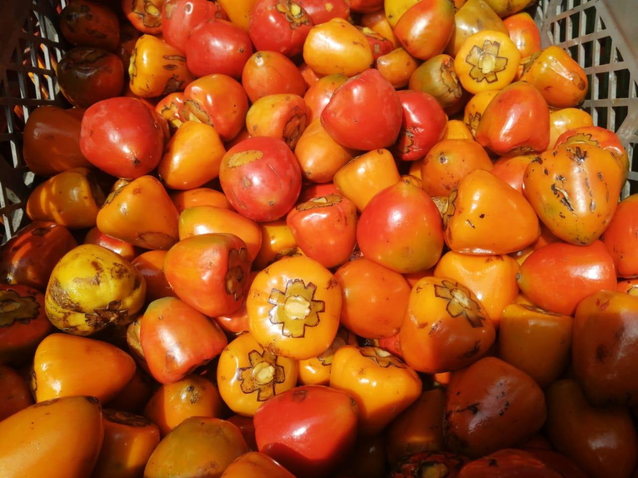 Este fruto tropical es muy apetecido por la gente