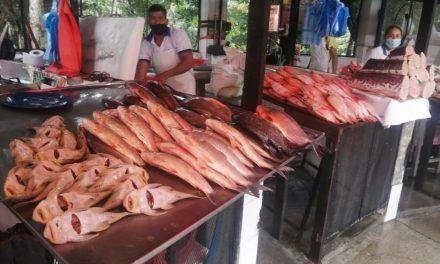 Venta de pescado, negocio que hace su agosto en Semana Santa