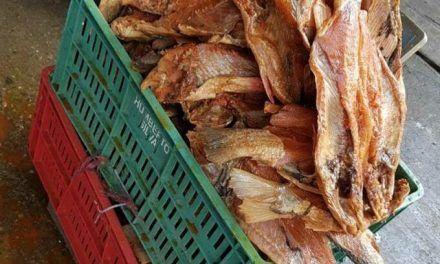 52 kilos de pescado en descomposición fueron decomisados en Neiva