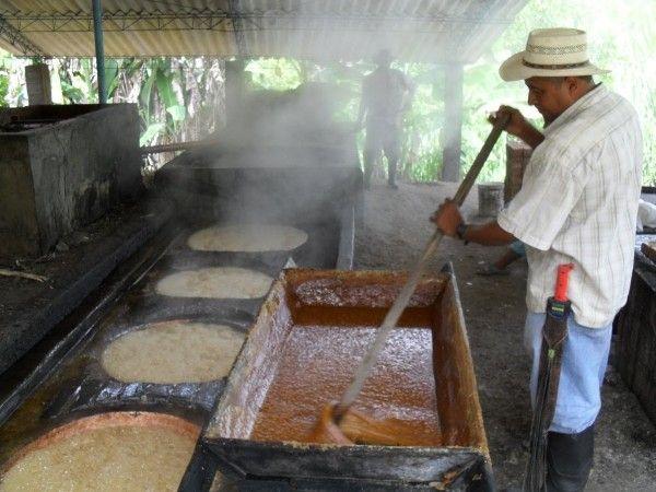 Las pailas donde se evapora el agua de la caña de azúcar pueden llegar a los 135 grados centígrados.