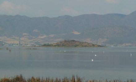 El milenario lago de Cuitzeo, el segundo más grande de México está en peligro