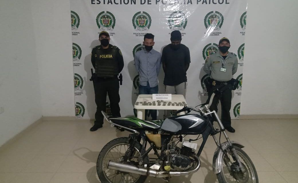 Sujetos fueron capturados por pretender comercializar marihuana en Paicol