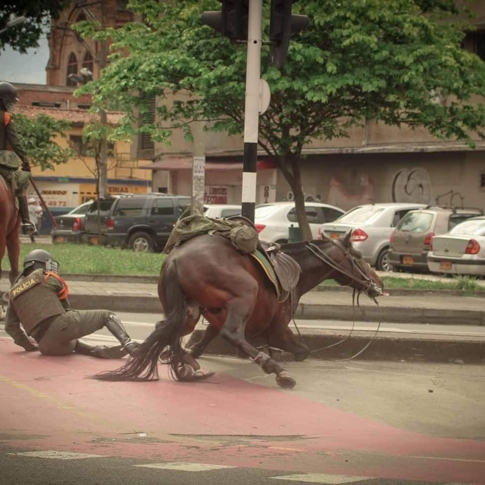 Controversia por utilización de caballos en protestas
