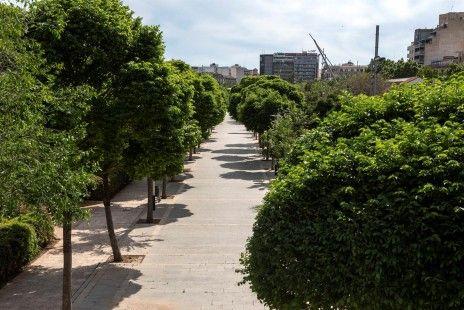 Los espacios verdes favorecen el desarrollo infantil al reducir la polución