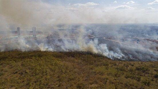 Los incendios vuelven a amenazar la biodiversidad en el Pantanal brasileño