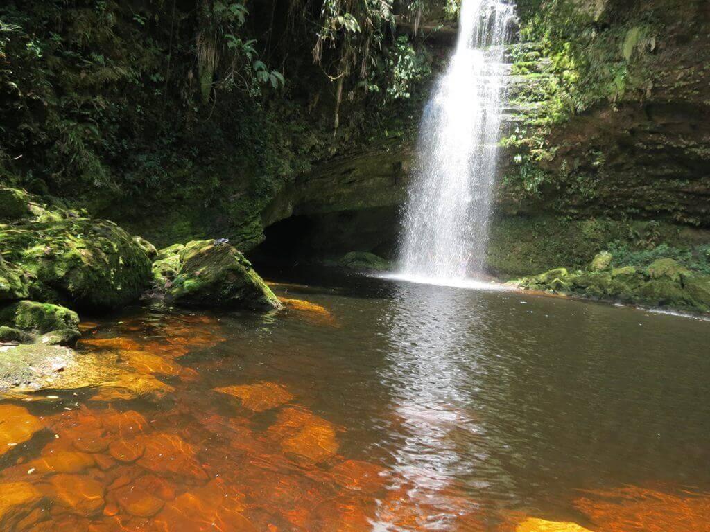 45 de las 59 áreas de Parques Nacionales Naturales están amenazadas
