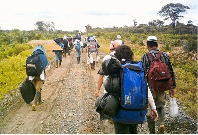 Desplazamiento forzado aumentó un 213%