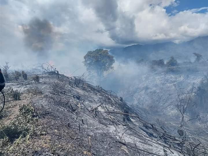 CAM multará a quienes provoquen incendios forestales en el Huila