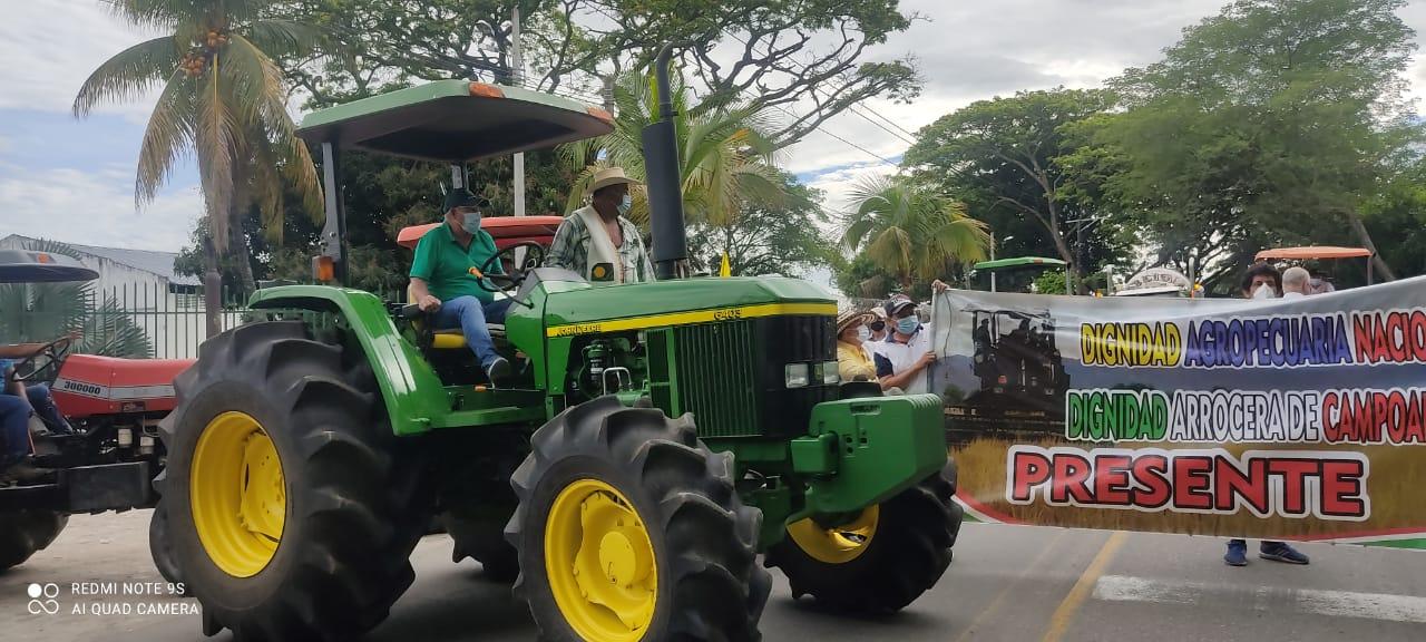 Debido a la crisis económica, arroceros del Huila se unieron al paro