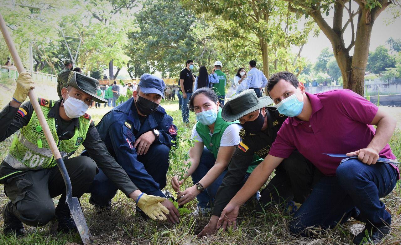 Sembratón en el Día Mundial del Árbol para resaltar la importancia de los bosques