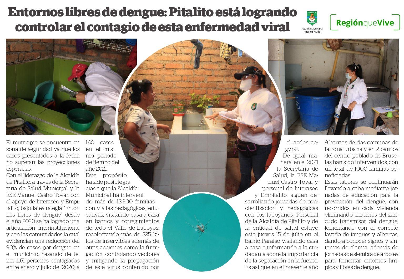 Entornos libres de dengue: Pitalito está logrando controlar el contagio de esta enfermedad viral